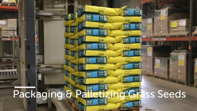 Packaging & Palletizing Grass Seeds 10kg paper bags