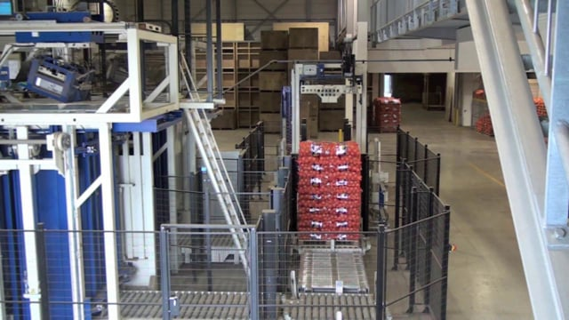 1201 Onions 25 kg 2 x MACH5 wrapping strapping - SYMACH Palletizers